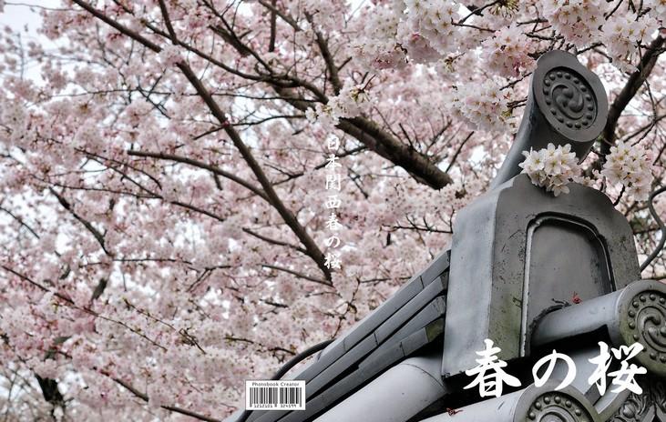 2012日本関西春の桜